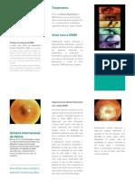 Folheto Retina