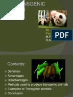 transgenicanimalsppt-110908090439-phpapp02