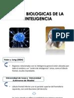 Bases Biologicas de La Inteligencia