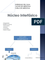 Estructura Del Complejo Del Poro Nuclear-2