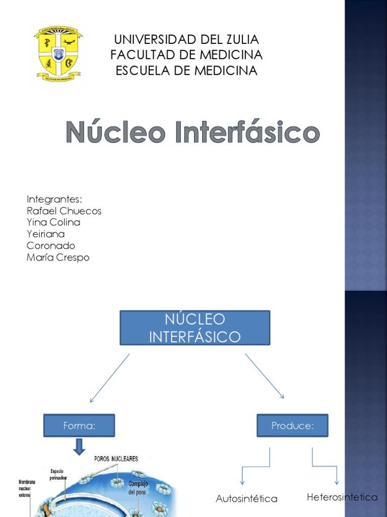 Estructura Del Complejo Del Poro Nuclear 2