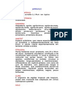 Jambuaçú - Spilanthes acmella (L.) Murr. var. typica. - Ervas Medicinais – Ficha Completa Ilustrada