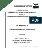 tesis-conformato.docx