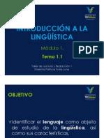 Introducción a la lingüística