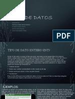 los tipos de datos exposicion