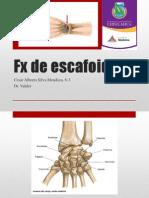 FX de Escafoides