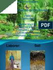 AGRONOMY ESP 2.pptx