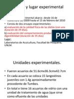 macroalgas [Autoguardado]