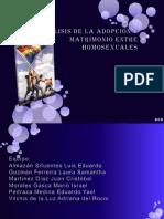 anlisisdelaadopcinymatrimonioentrehomosexuales1-110320221520-phpapp02