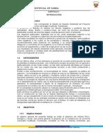 EIA Carretera C. Constitucion - Puerto Orellana 1 Parte