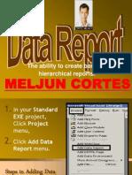MELJUN CORTES Visual Basics Data Report & Data Environment & Input Validation & Application Distribution