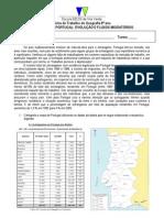 FTImigraçãoPortugal