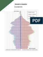Demografischer Wandel in Salzgitter