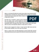 RABIES-EN.pdf