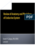 1 Review of Anatomy and Physiology of Endocrine System