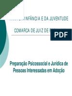 Preparação Psicossocial e Jurídica de Pessoas Interessadas em Adoção