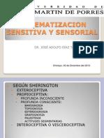 Sistematización Sensitiva y  Sensorial