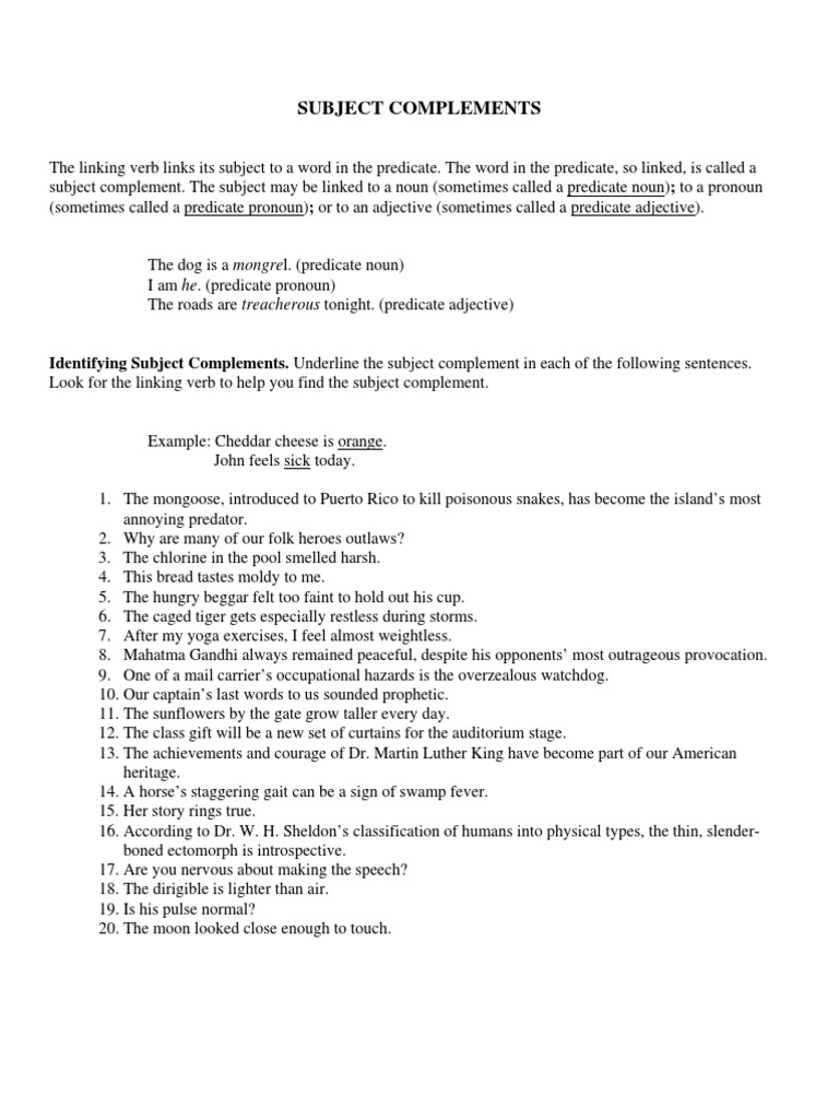 Predicate Noun And Predicate Adjective Worksheet Images Worksheet