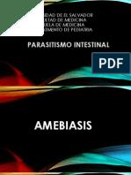 Seminario Parasitosis 1.pptx