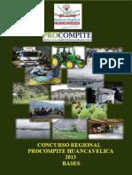 Bases y Convocatoria 2013 Actualizado Julio111