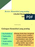 Biomolekul Yang Penting