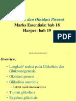 Glikolisis Dan Oksidasi Piruvat