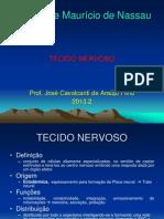 Tecido Nervoso 20132