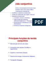 Histologia tecido conjuntivo[2] (1)