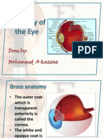 eyeanatomy-130923133056-phpapp02
