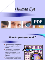 thehumaneye10-13-2011-121012065319-phpapp01