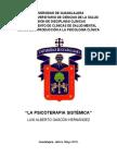 Ensayo Psicoterapia Sistémica.doc