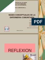 bases conceptuales de enfermería comuniatria CI  A2012