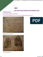 8. the Anatomy and Histolog..