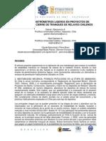 Uso de Penetrometros Ligeros en Proyectos de Operacion y Cierre de Tranques de Relaves Chilenos