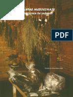 Plantas Medicinais - Coletaneas de Saberes