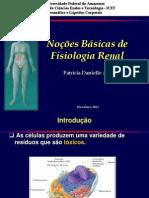 Aula 01 - Função dos rins e formação da urina