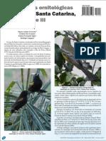 Observações ornitológicas no oeste de Santa Catarina - parte III