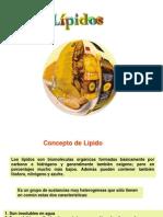 lipidos_propiedades