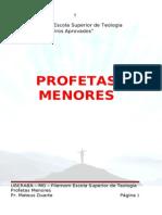 (38) Profetas Menores