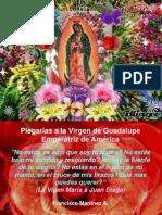 Virgen de Guadalupe, Emperatriz de América