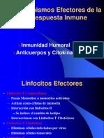 inmuno-4
