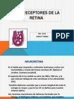 FOTORECEPTORES DE LA RETINA.pptx