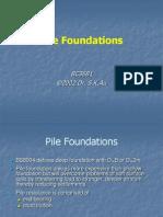 Fundacioon de Pilotes