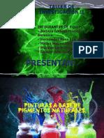 Proyecto Pigmentos