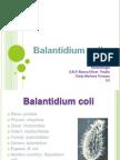 Balantdium Coli