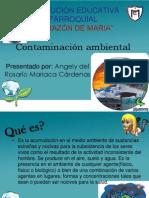 Diapositivas de Contaminacion Ambiental