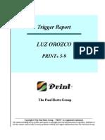 trigger report for luz orozco