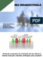 comunicare sociala Proiect