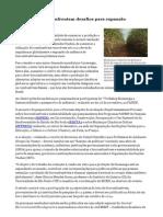 Agência FAPESP - Biocombustíveis enfrentam desafios para expansão - 25_11_2013