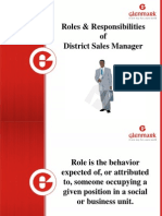 Roles & Responsibilities of DSM